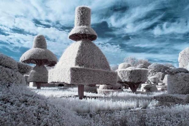 2012年全球年度园林摄影师奖第3张图片