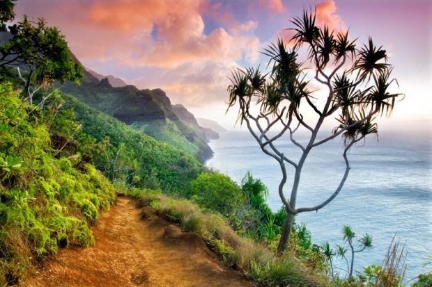 2012年全球年度园林摄影师奖第5张图片