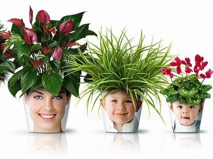 有趣的花盆