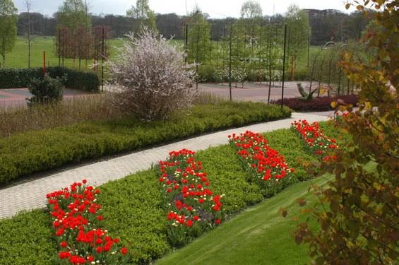 绿色灵感花园第5张图片