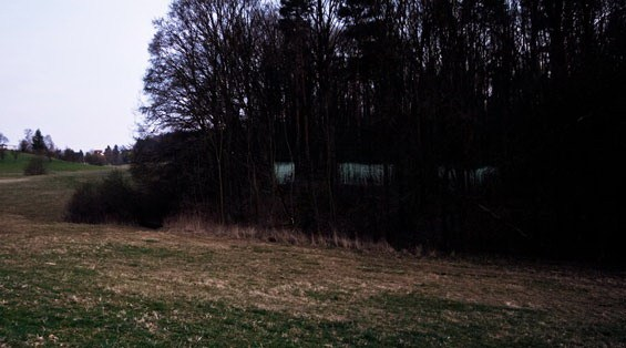 学生项目-森林景观装置第6张图片