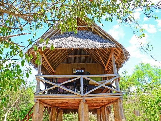 肯尼亚树屋第1张图片