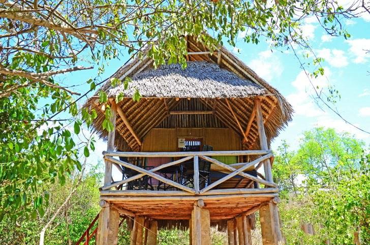 肯尼亚树屋第2张图片