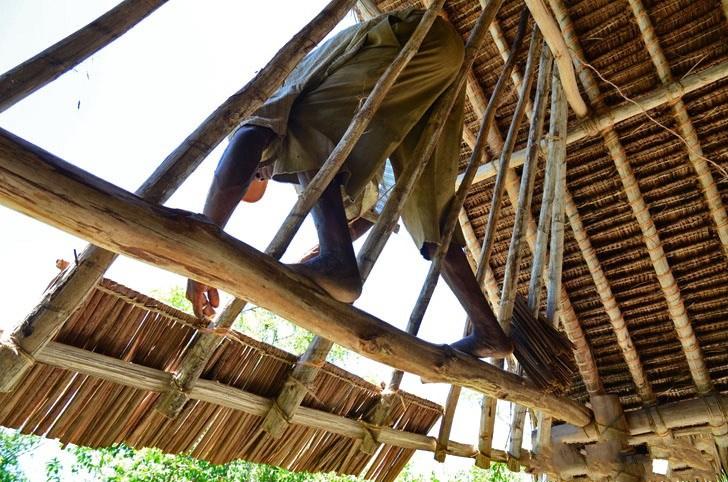 肯尼亚树屋第3张图片