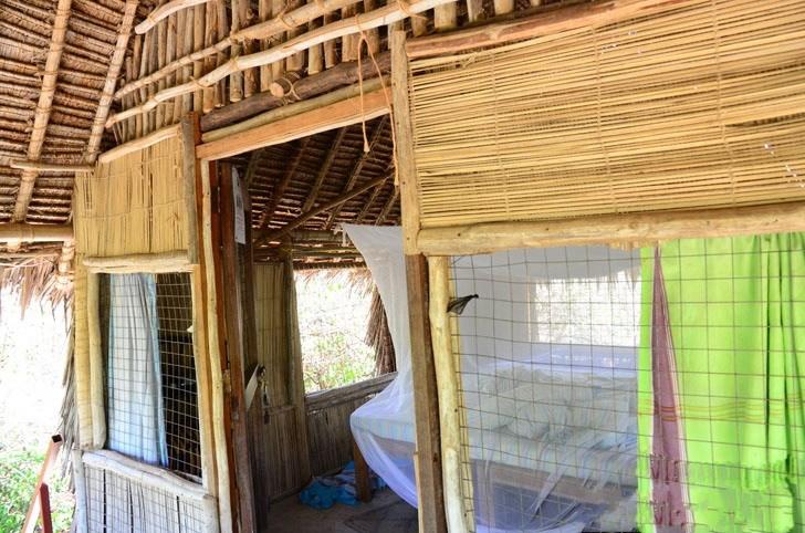 肯尼亚树屋第5张图片