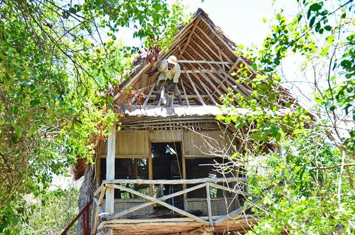 肯尼亚树屋第6张图片