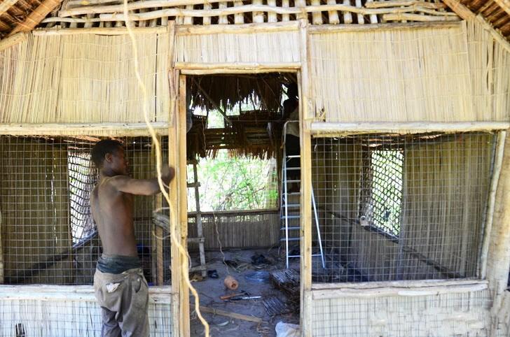 肯尼亚树屋第7张图片