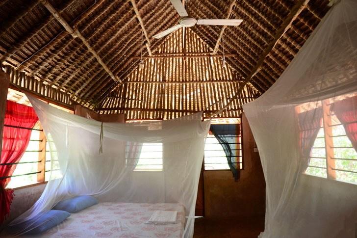 肯尼亚树屋第14张图片
