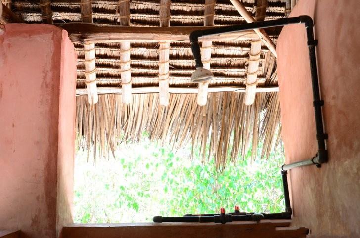 肯尼亚树屋第25张图片