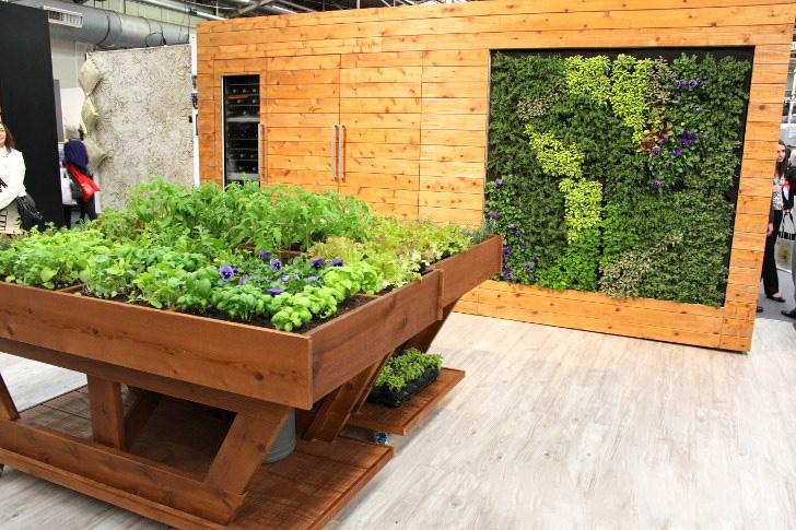 绿墙壁厨房和草本植物花园