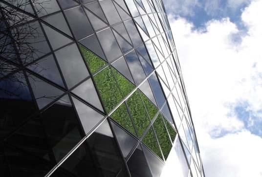变绿的伦敦黄瓜塔第7张图片