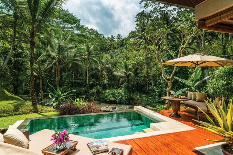 雨林中的度假村第11张图片