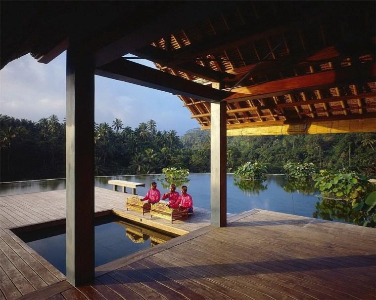 雨林中的度假村第16张图片