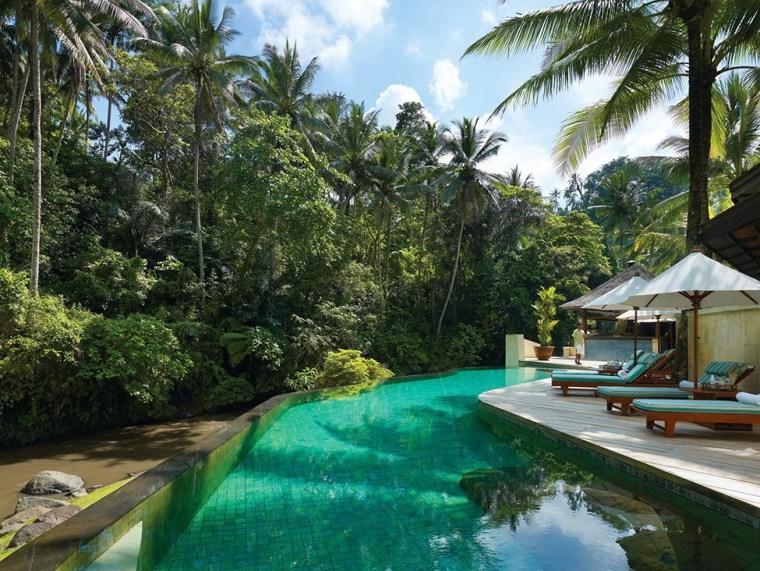 雨林中的度假村第21张图片
