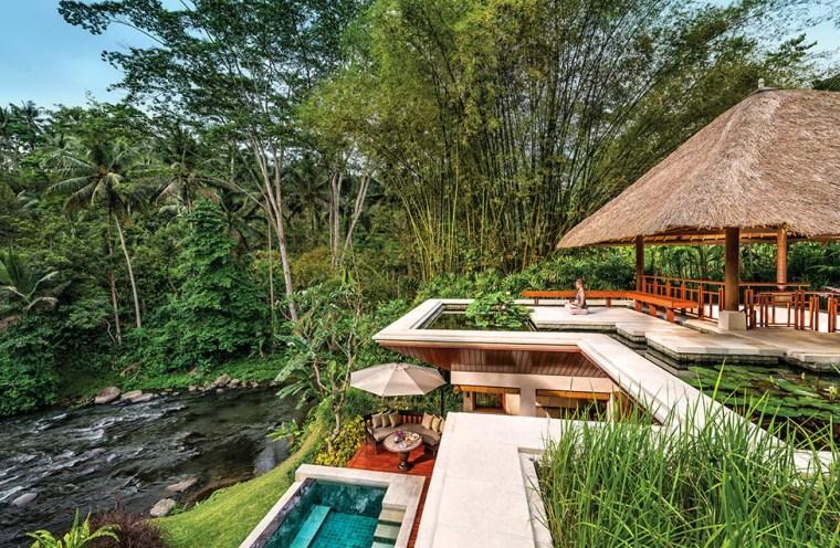 雨林中的度假村第24张图片