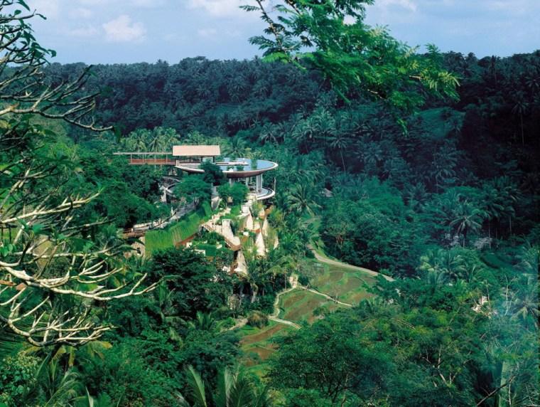 雨林中的度假村第28张图片