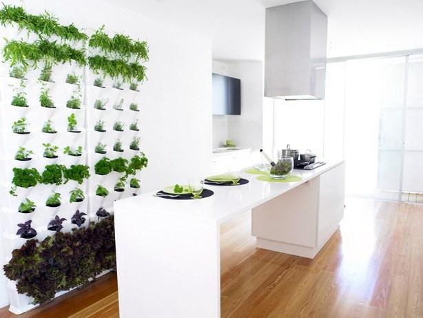 为阳台、露台和厨房设计的迷你垂直花园