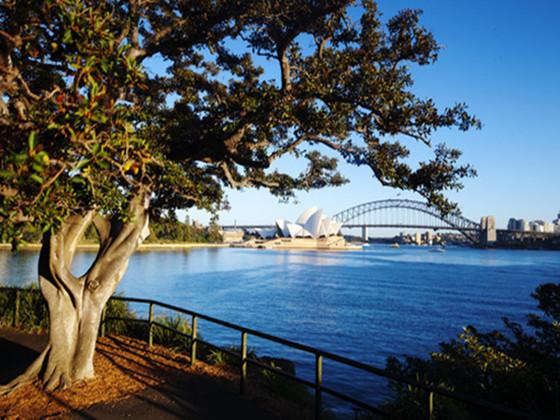 悉尼皇家植物园区整体规划