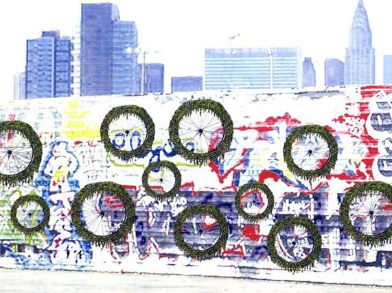 在自行车轮垂直花园上种菠菜