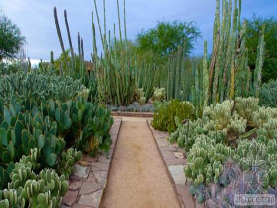 美国凤凰城沙漠植物园入口