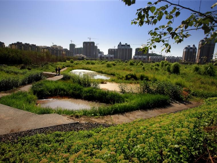 中国哈尔滨群力新区湿地公园