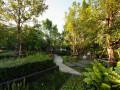 曼谷屋顶花园
