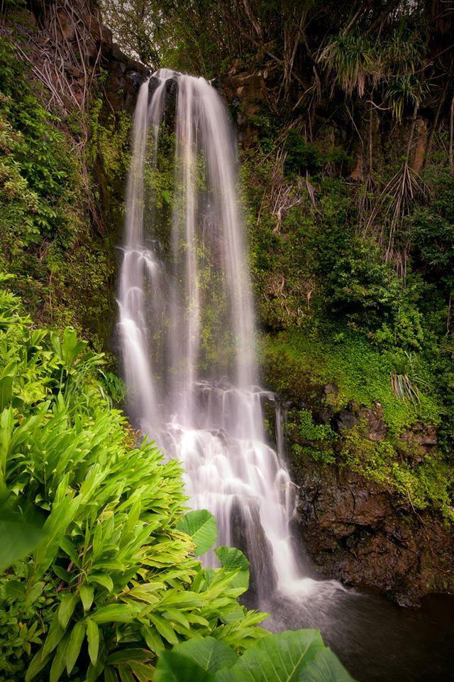 夏威夷拍卖的流水住宅-夏威夷拍卖的流水住宅第23张图片