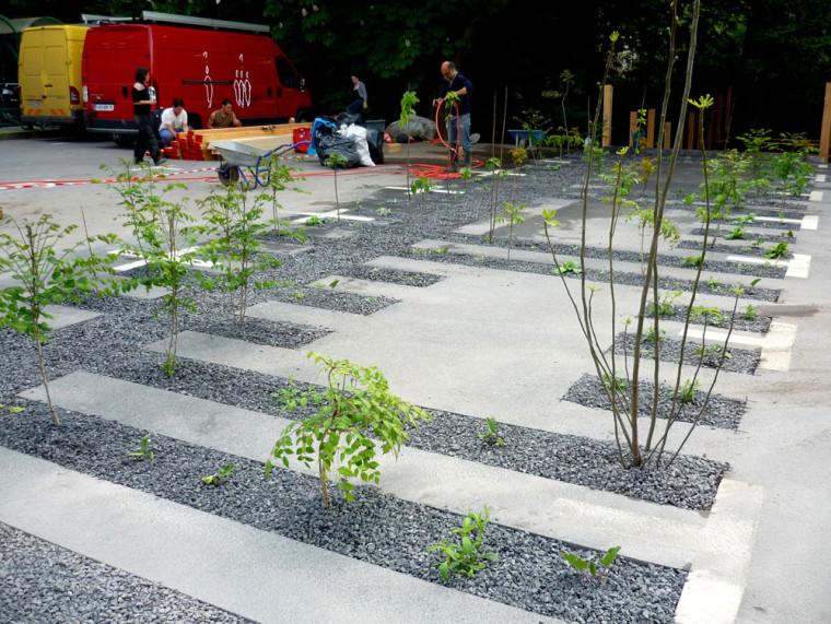 比利时停车场花园
