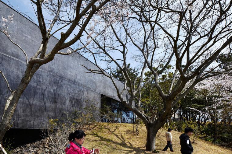 济州岛茶石博物馆及茶室外部局部-济州岛茶石博物馆及茶室第6张图片
