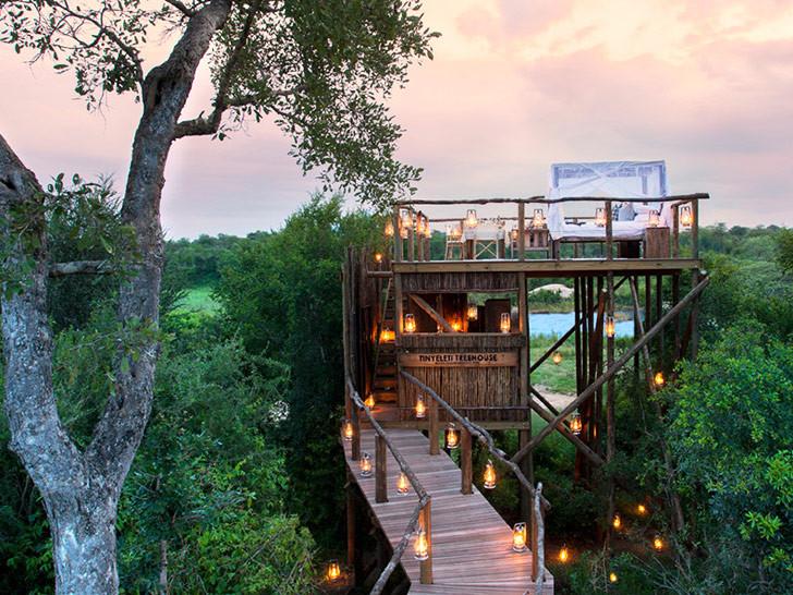 VIA葡萄酒品鉴屋资料下载-南非狮子滩树屋