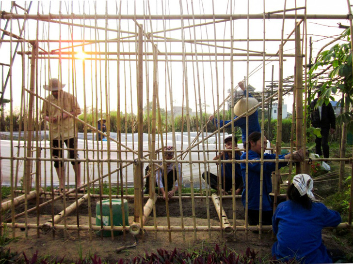 越南蔬菜育苗大棚流程图-越南蔬菜育苗大棚第5张图片
