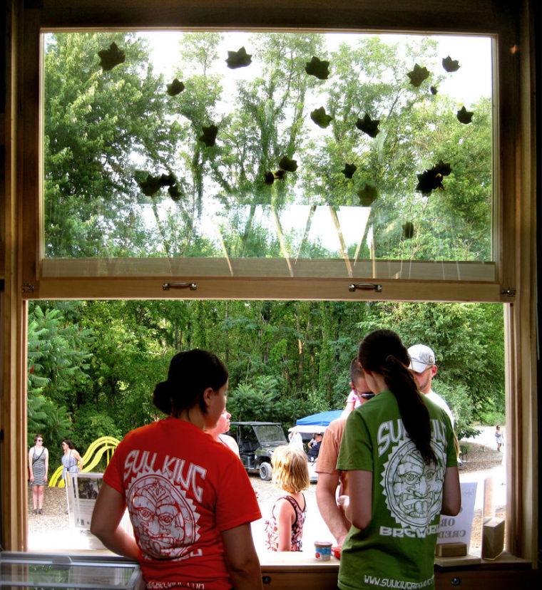 纳波利斯的筷子树景观-纳波利斯的筷子树景观第8张图片