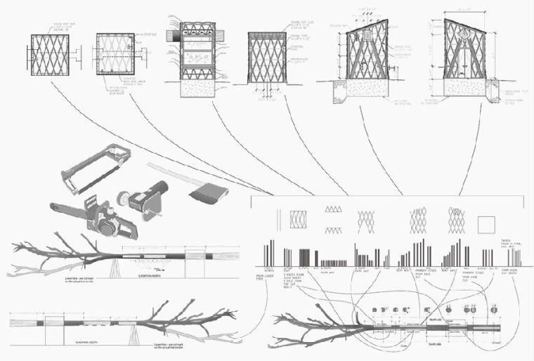 纳波利斯的筷子树景观图解-纳波利斯的筷子树景观第17张图片