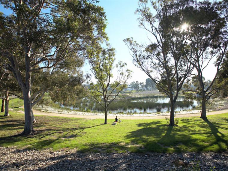 澳大利亚皇家湿地公园