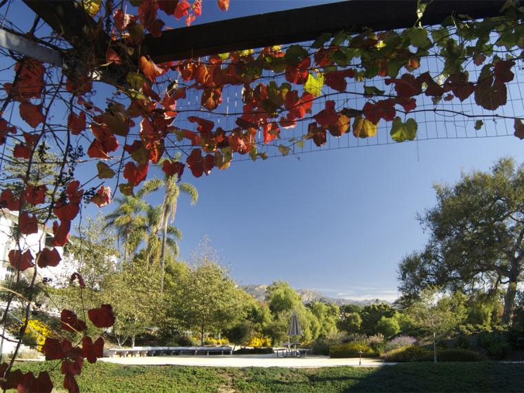 Casa Nueva办公区庭院景观