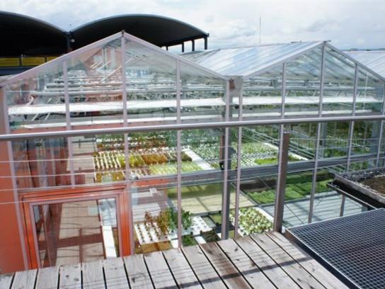 瑞士城市屋顶花园