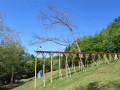 日本通向空中花园的通道