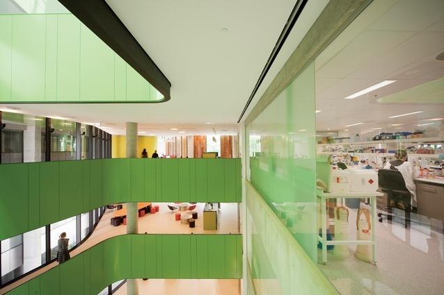 澳大利亚Lowy癌症研究中心内部局-澳大利亚Lowy癌症研究中心第7张图片