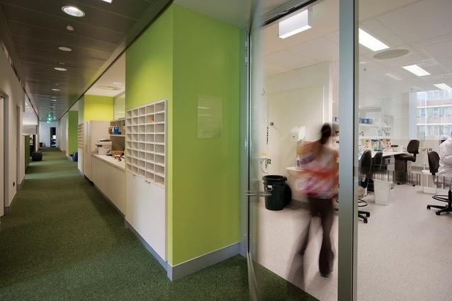 澳大利亚Lowy癌症研究中心内部过-澳大利亚Lowy癌症研究中心第6张图片