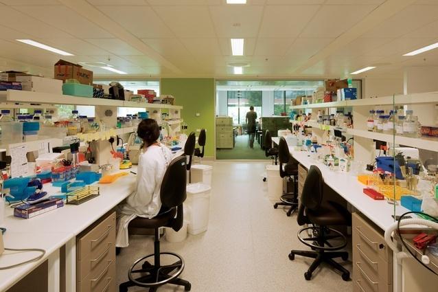 澳大利亚Lowy癌症研究中心内部办-澳大利亚Lowy癌症研究中心第8张图片