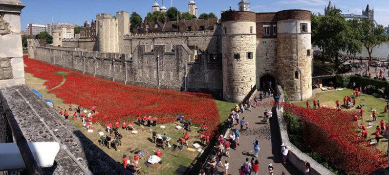 英国伦敦塔的红色罂粟花海外部实-英国伦敦塔的红色罂粟花海第2张图片