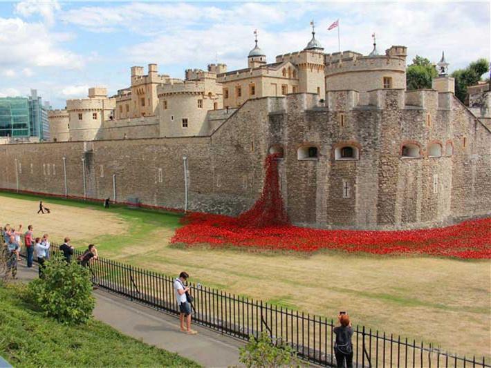 英国伦敦塔的红色罂粟花海第1张图片