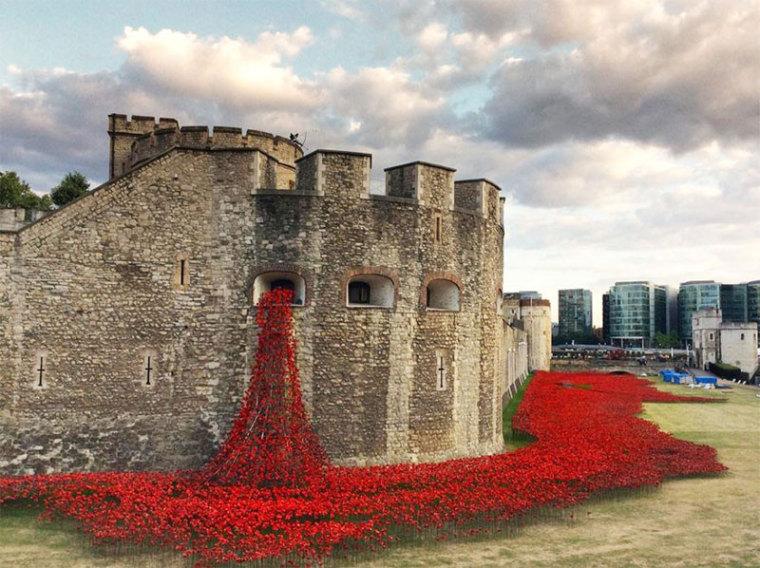 英国伦敦塔的红色罂粟花海外部实-英国伦敦塔的红色罂粟花海第4张图片