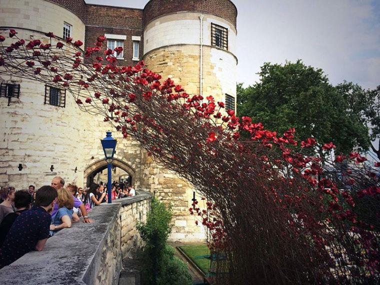 英国伦敦塔的红色罂粟花海外部局-英国伦敦塔的红色罂粟花海第7张图片
