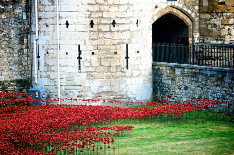 英国伦敦塔的红色罂粟花海外部局-英国伦敦塔的红色罂粟花海第9张图片