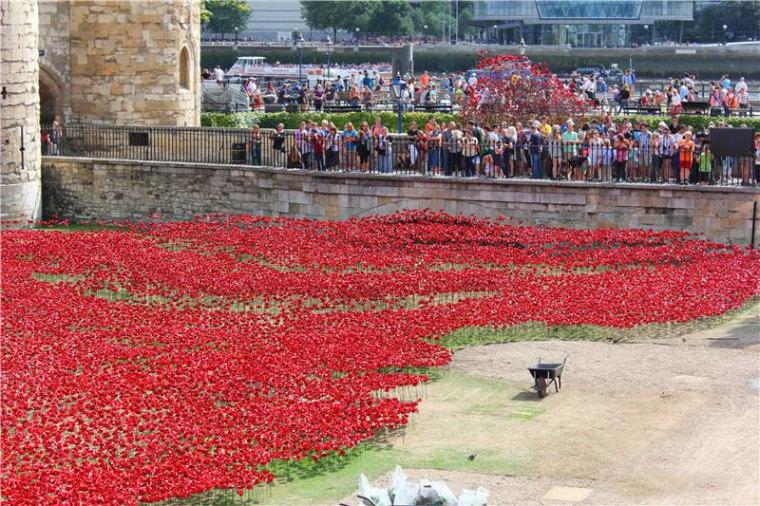 英国伦敦塔的红色罂粟花海外部细-英国伦敦塔的红色罂粟花海第11张图片