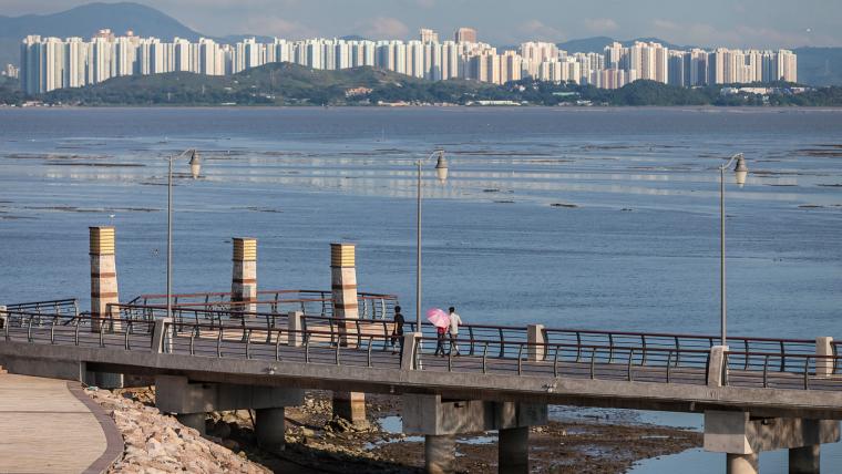 广东深圳湾景观外部局部实景图-广东深圳湾景观第5张图片