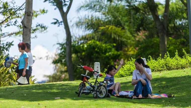 广东深圳湾景观外部草坪实景图-广东深圳湾景观第10张图片