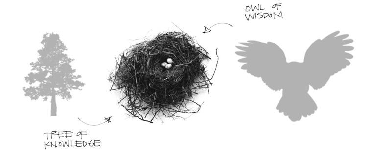 美国纽约木板鸟巢草图-美国纽约木板鸟巢第8张图片