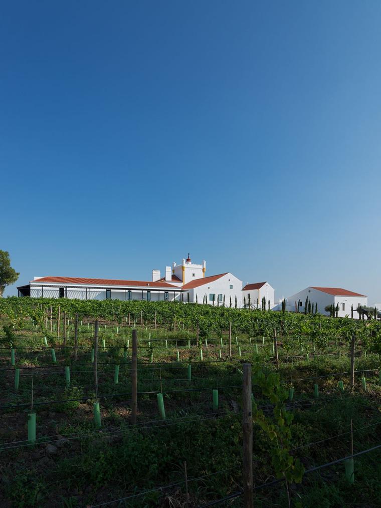 葡萄牙TorredePalma酒庄酒店-葡萄牙Torre de Palma酒庄酒店外-葡萄牙Torre de Palma酒庄酒店第2张图片